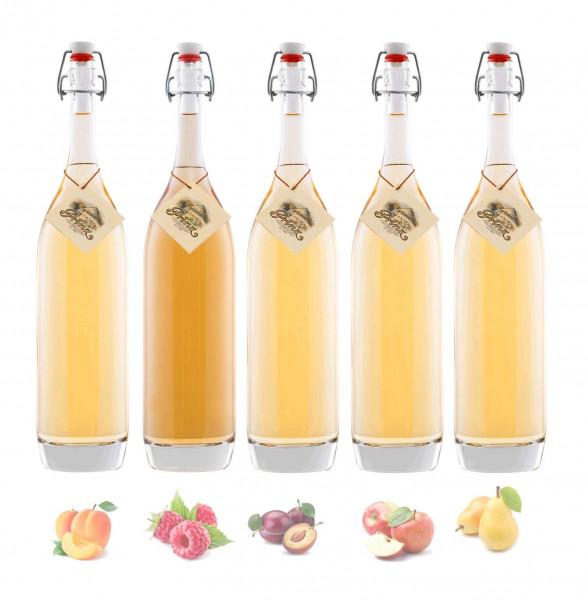 Probierpaket: 5 Flaschen Prinz Alte Sorten 0,5l