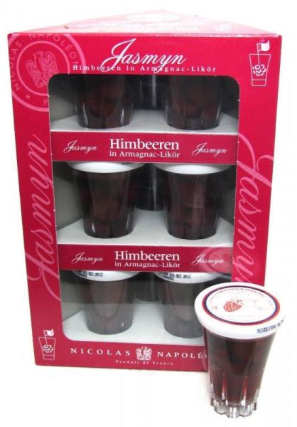 Jasmyn Himbeeren in Armagnac-Likör 9x0,04l Miniaturen incl. Geschenkpackung